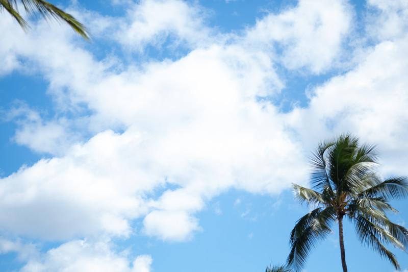Hawaii-KAYO-77.jpg
