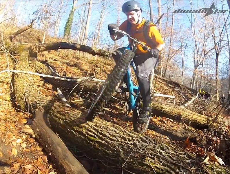log ride 10.jpg