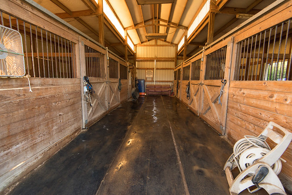 Saint Horse Farm and Boarding Lexington SC