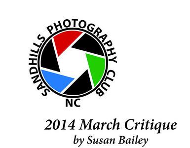 2014 March Critique