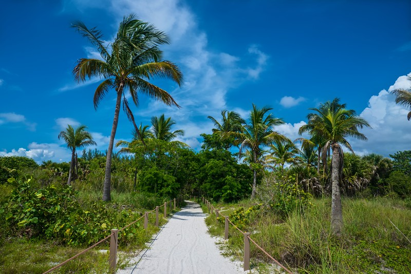 Beach Path 1.jpg