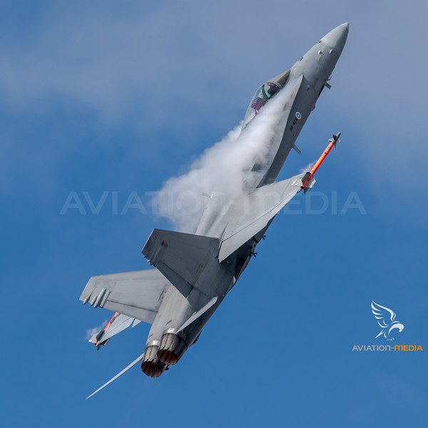 Finnish Air Force / McDonnell Douglas F/A-18C Hornet / HM-406