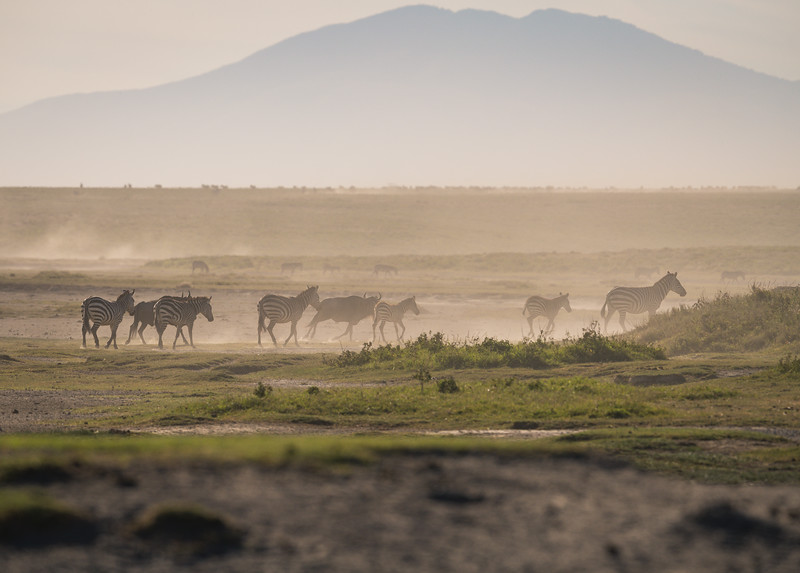 Tanzania_Feb_2018-373.jpg