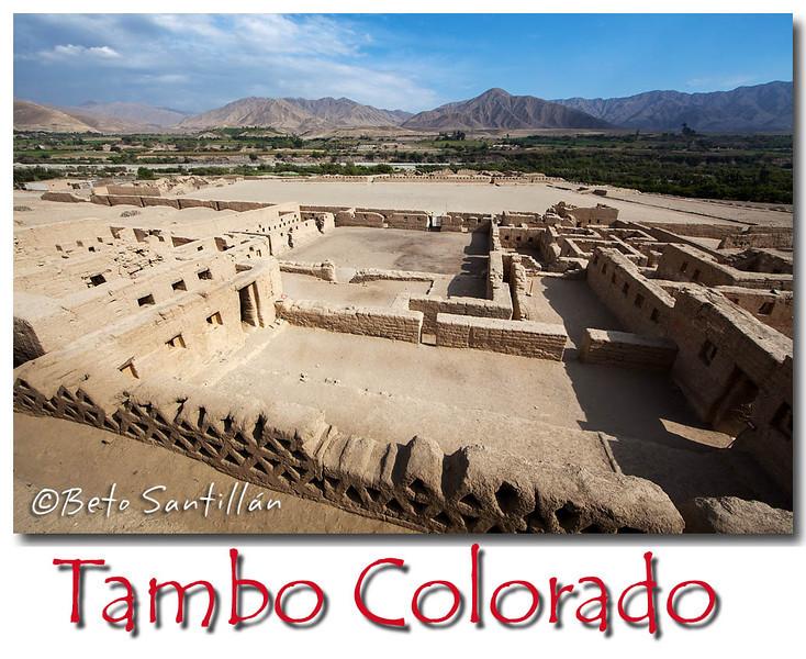 TAMBO COLORADO 5DMKII 031113-0409 .jpg
