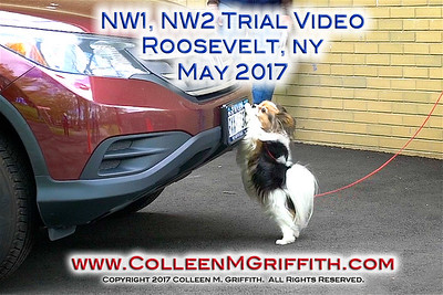 Roosevelt NY May 2017 NW Trials