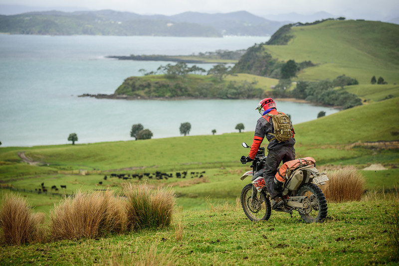 2018 KTM New Zealand Adventure Rallye - Northland (424).jpg
