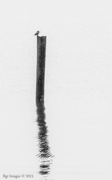 Tacoma_20131221-12.JPG