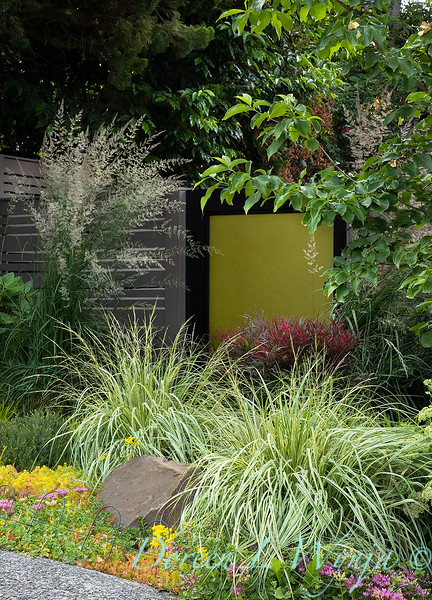 The Chartreuse Garden_1002.jpg