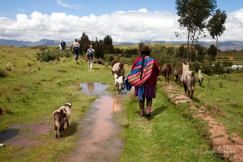 20120329_Cuzco_Tambo Machay_templeofthemoon_2255.jpg