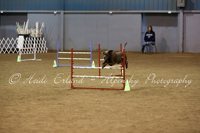 TOP Dog CPE - Jumpers L345C - 10/21/12