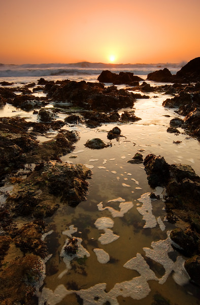 Tide Pool, Sunset Pescadero State Beach California