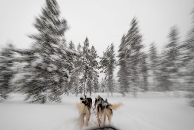 Finland_160116_41.jpg