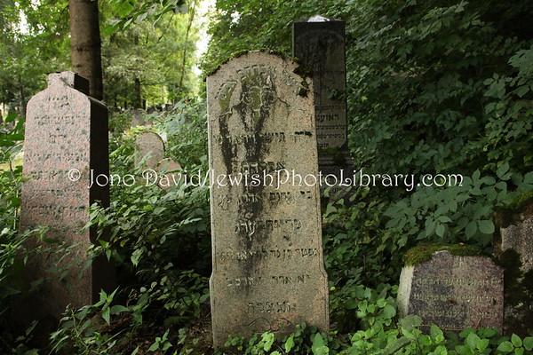 LITHUANIA, Kaunas. New Jewish Cemetery. (9.2011)