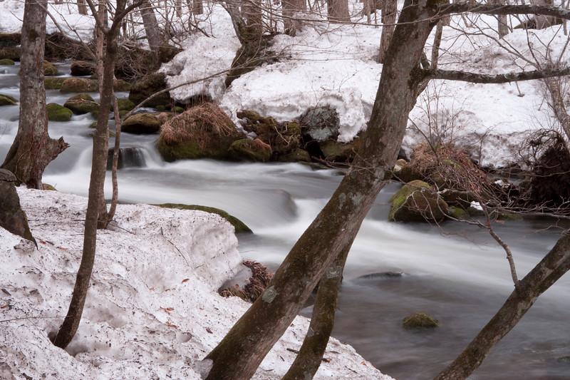 Oirase Gorge, Winter 2008-2009
