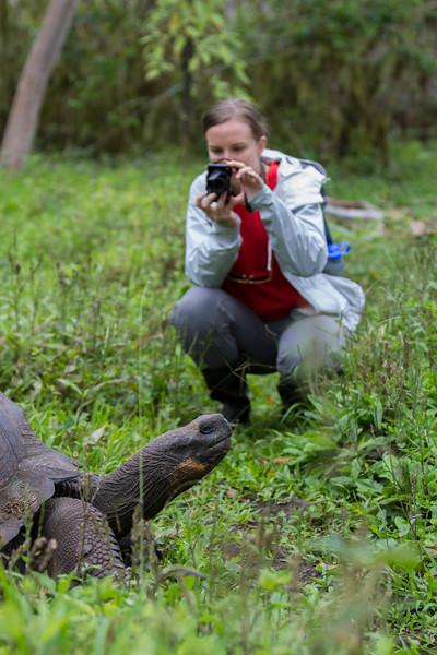 Giant tortoise  w Molly, Santa Cruz.jpg