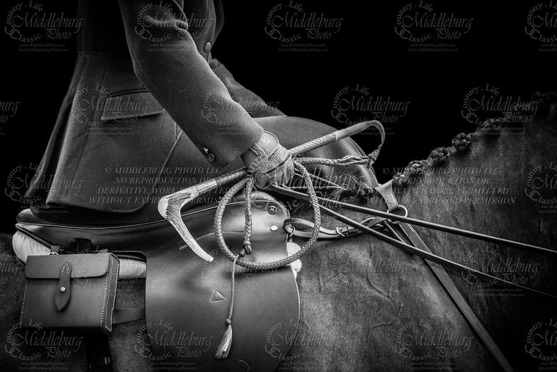 Classic Equestrian Art