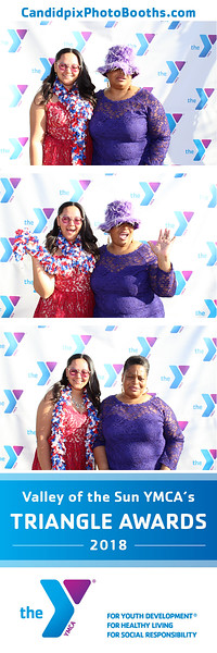 Valley Of the Sun YMCA Triangle Awards 2018