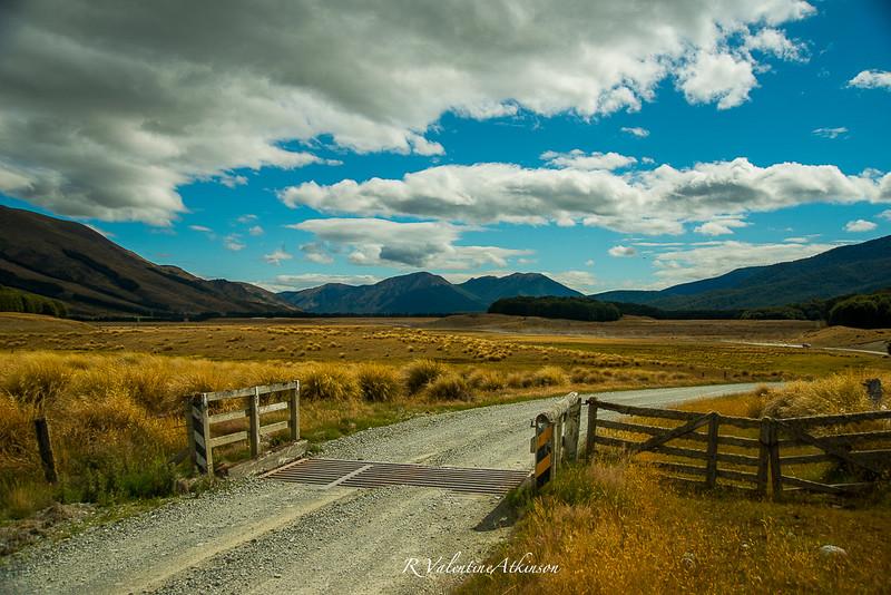 NZ 2016 best-58.jpg