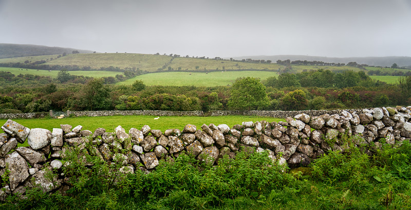 2019-09Sep-Ireland-Ennis-133-Edit.jpg