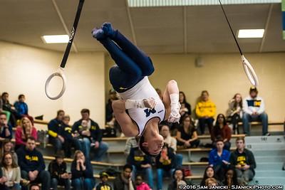 Still Rings - UM Men's Gymnastics Vs UIC 3-26-16