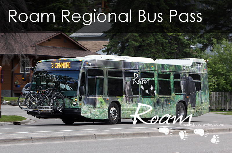 Button Image - Roam Regional Pass.jpg