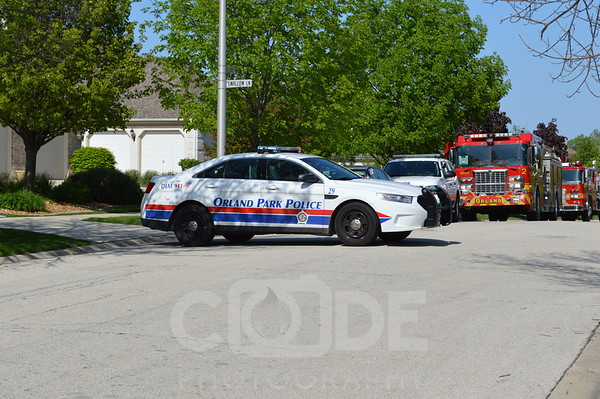 Orland Park Police
