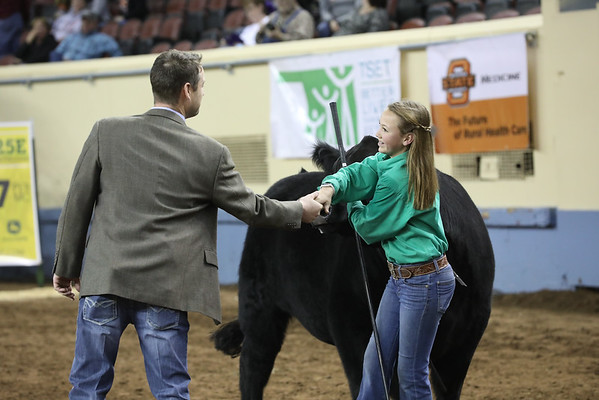 OYE Cattle Showmanship 3/19/2019