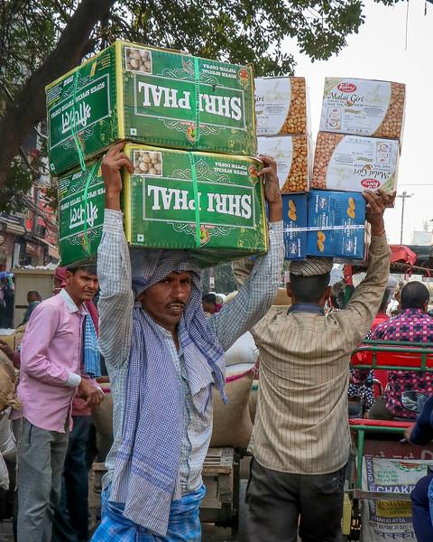 India-Delhi-2019-0659.jpg