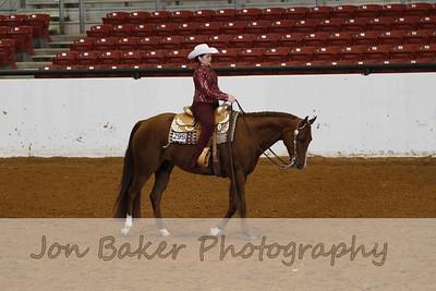 Day 2 - Horsemanship