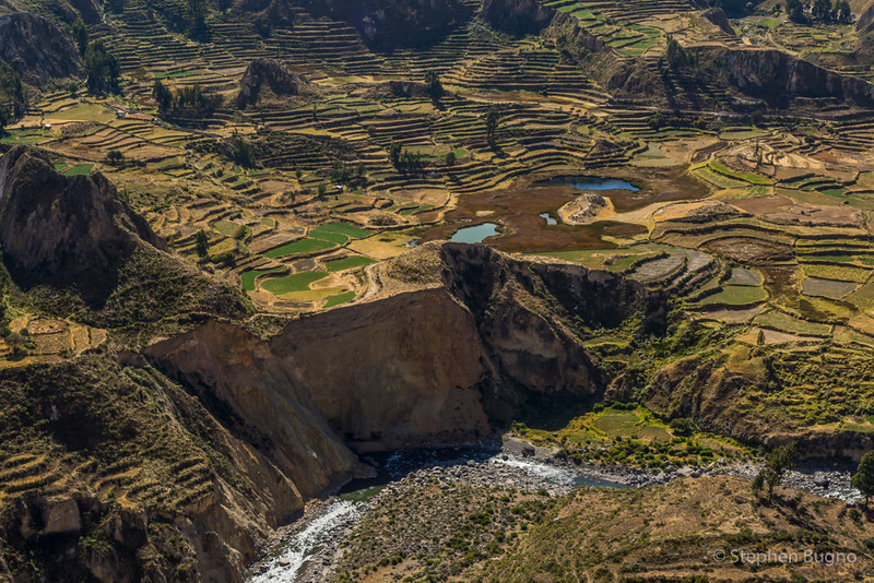 Colca Canyon-1402.jpg