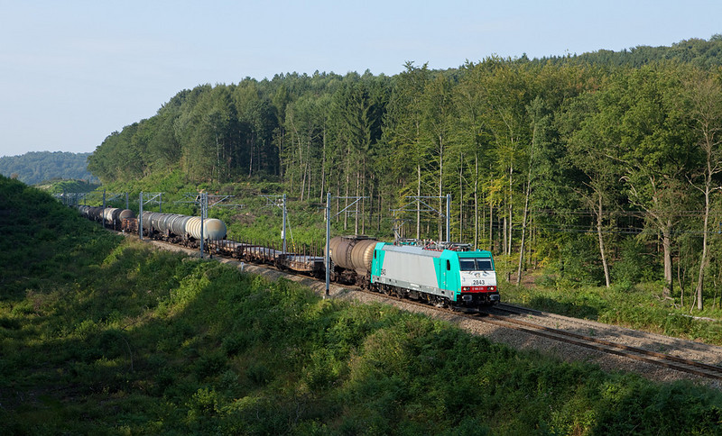 The newest and last Traxx, 2843, leads train 44532 (Gremberg/D - Antwerpen-Noord) between Botzelaar and Montzen approaching the Rue d'Aix overpass. The forest was seriously cut back to make room for the electrification work here in 2008, but nature is regaining lost ground fast.