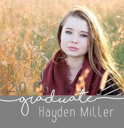 Hayden Book