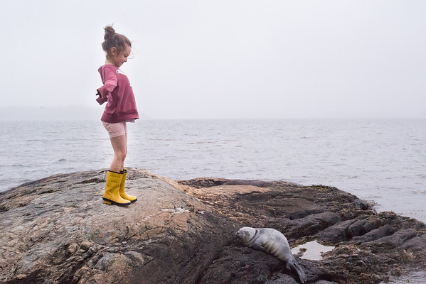 Maine Family Photographer - Week 23/52 #the52project