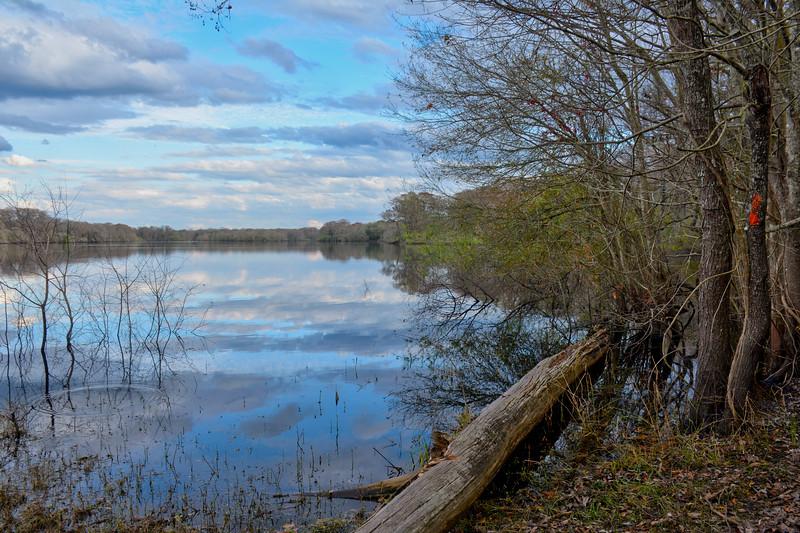 WESTERN CORRIDOR Croom Silver Lake.jpg