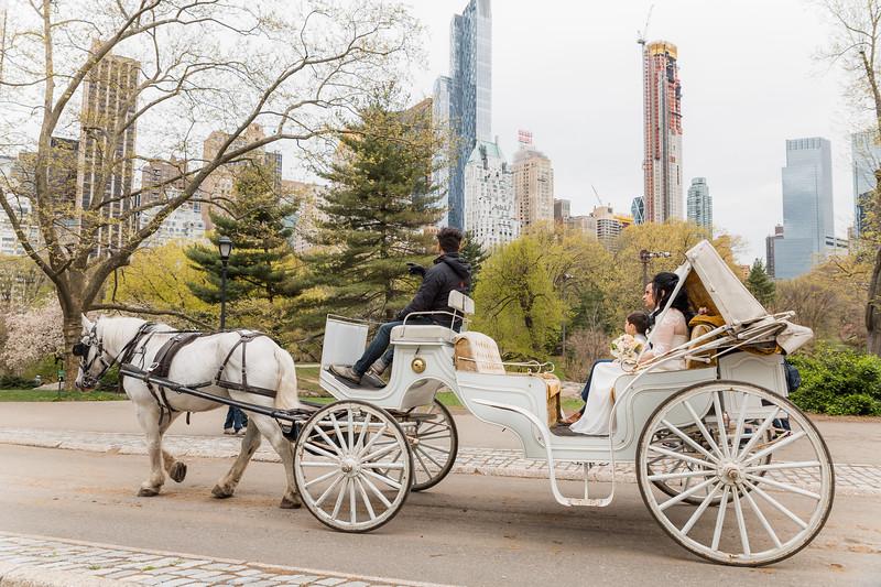 Central Park Wedding - Diana & Allen (35).jpg