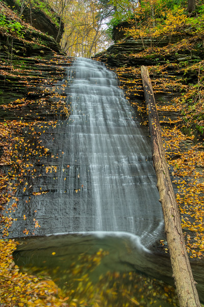 NY Waterfalls Fall 2019-13.jpg