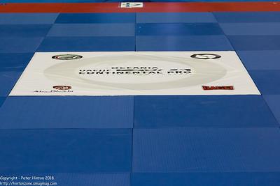 IBJJF Continental Pro Feb 25