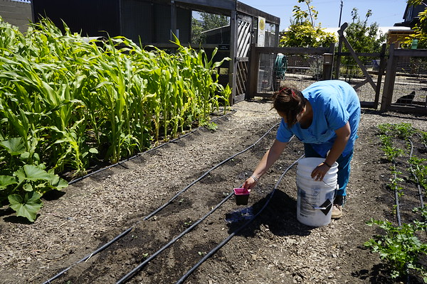 2018 7/8 Introduction to Permaculture Workshop