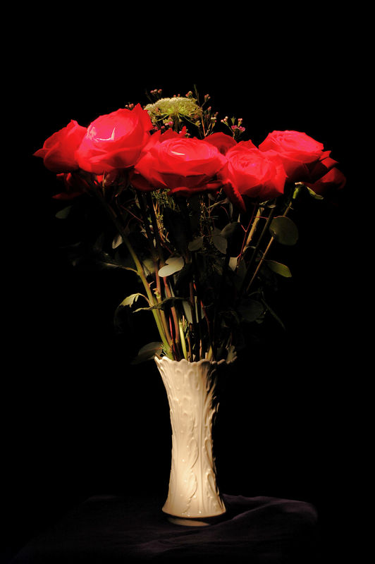 Flashlight Roses