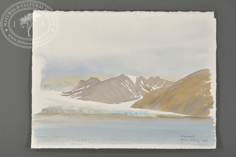 """Bellsund, Svalbard 