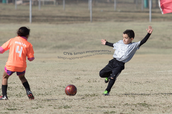 U8 - ORANGE VS GREY - MARCH 24