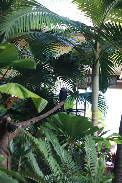Kauai_D5_AM 227.jpg
