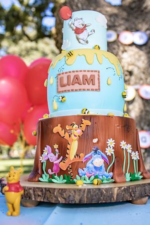 2019-08-04 Liam's 1st Birthday