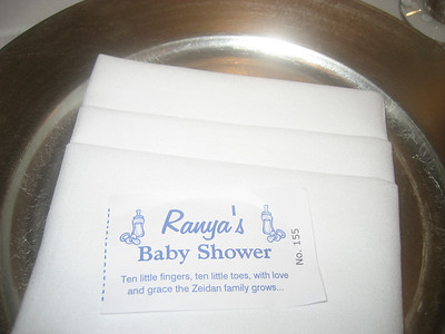 Ranya Zeidan's Baby Shower  November 03, 2007