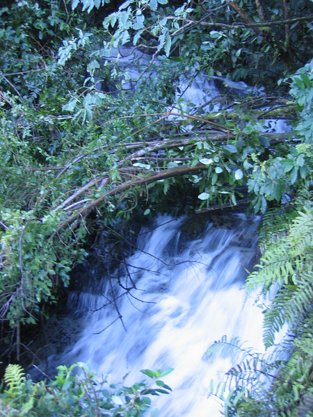 Mokau Waterfalls