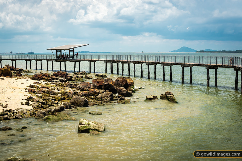Chek Jawa Wetlands walkway