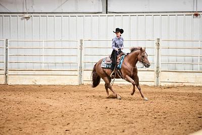 VRH Amateur Ranch Riding