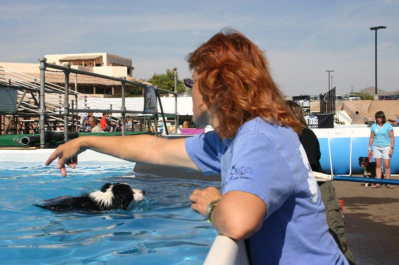 Sandy R providing free advice for dock dogs