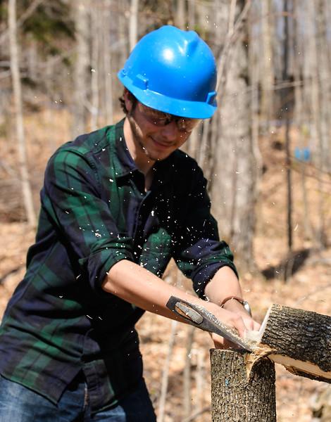 woodcrew1041.jpg