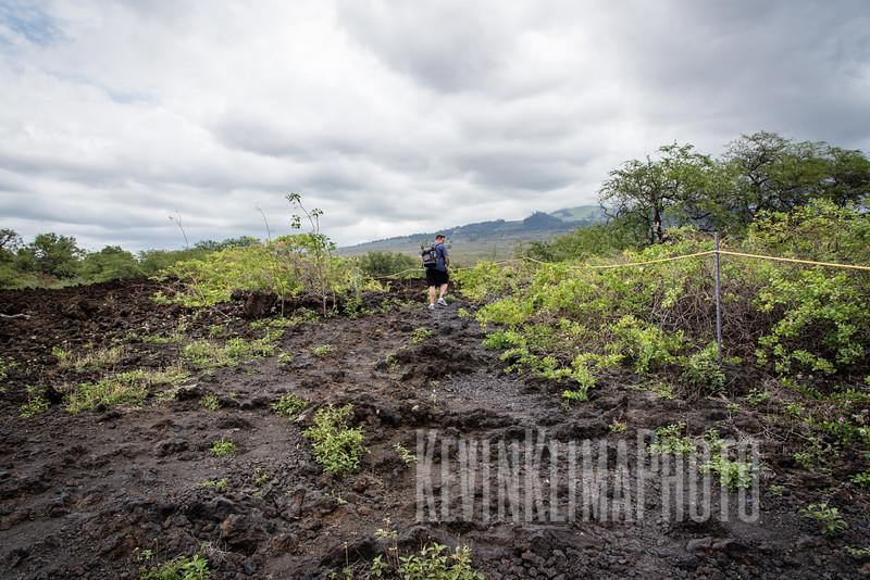 Maui2016-090.jpg